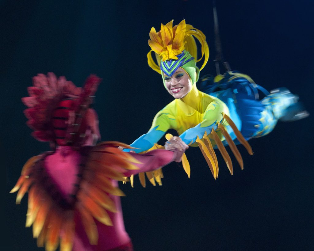 The Festival of the Lion King Pictorial