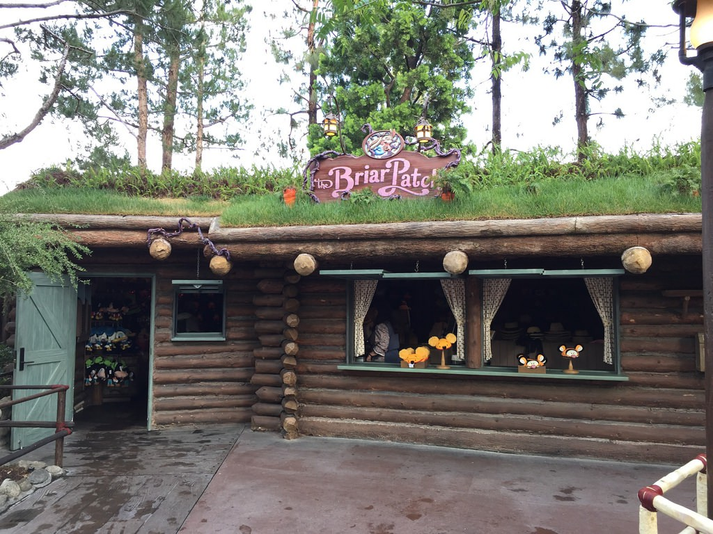 Briar Patch Disneyland