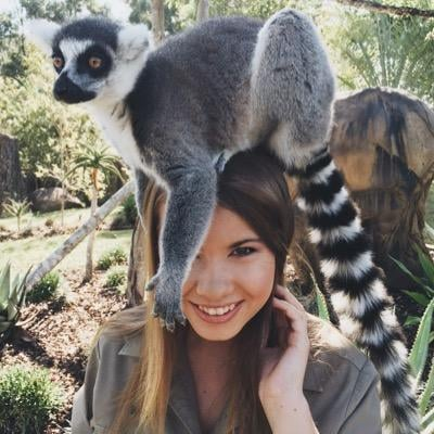 Bindi Irwin to Compete on Dancing with the Stars