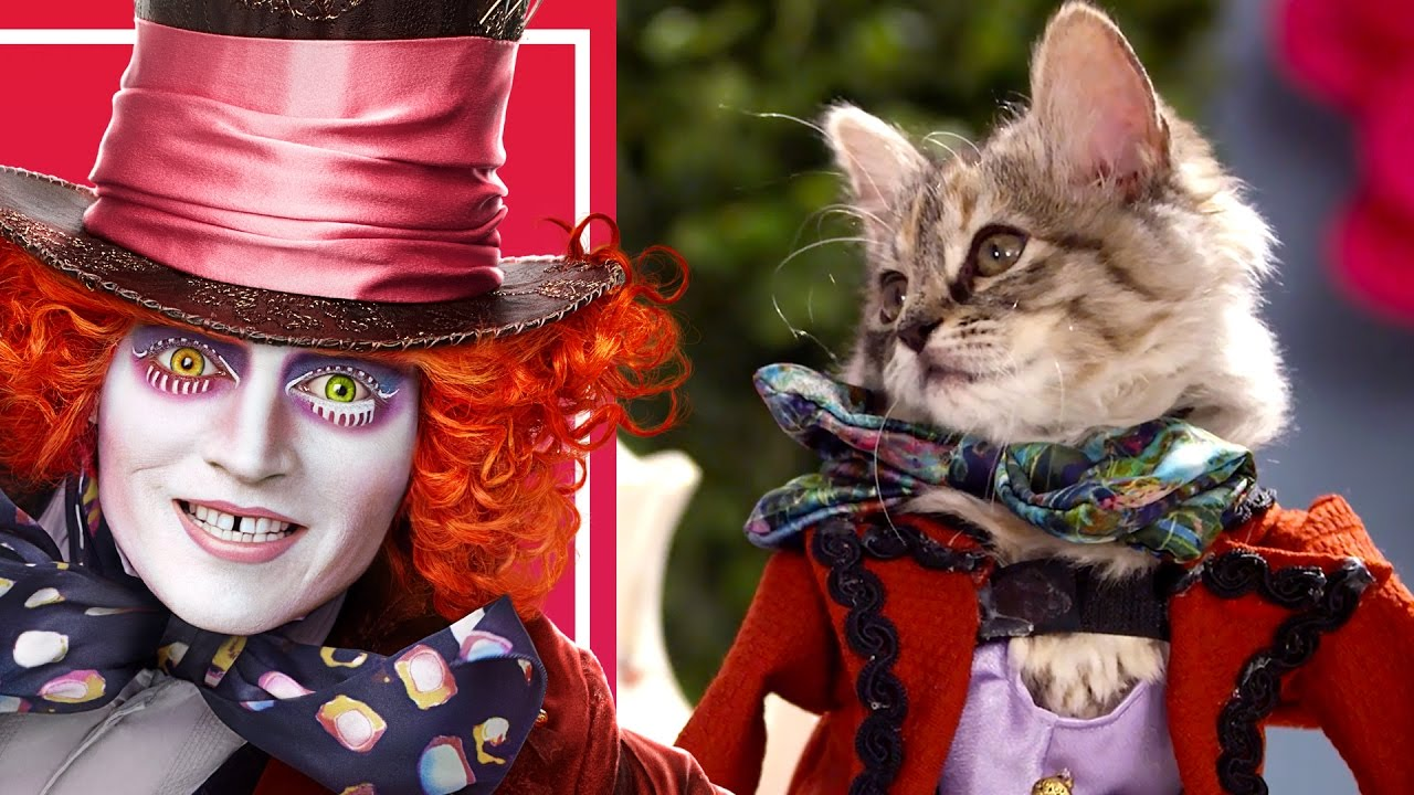 Alice Through the Looking Glass Gets Reimagined with Cats