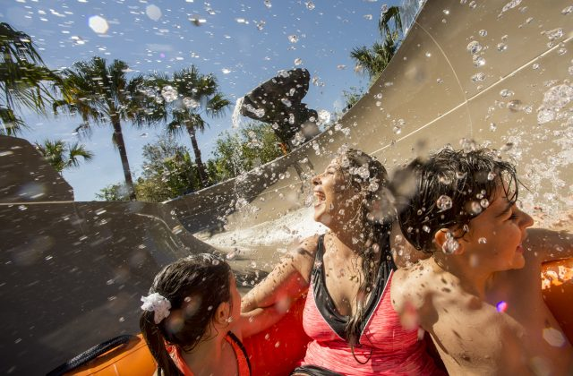 Walt Disney World Water Parks to Close March 15th, 16th Due to Cold Weather