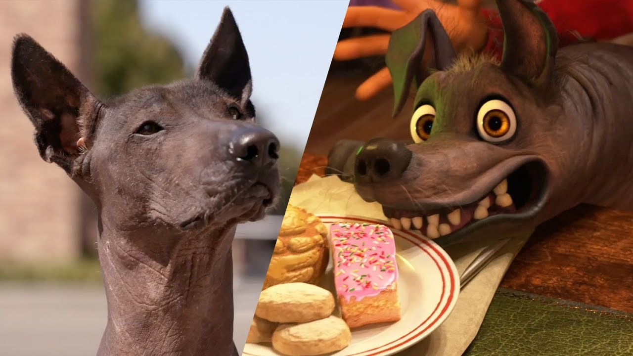 A Xolo Tours Pixar for National Dog Day