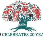 D23's 20 Years of Disney's Animal Kingdom Celebration Tickets on Sale March 19th