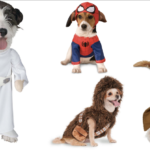 Complete Your Group Look with These Halloween Dog Costumes