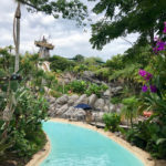 Typhoon Lagoon to be Closed Friday Due to Cold Temperatures
