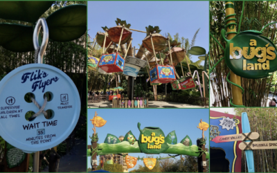 "Decorations From ""a bug's land"" to Be Donated To Local Organizations"