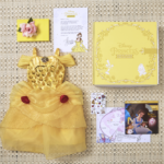 Turn Your Princess into Belle with the December Disney Princess Enchanted Collection Subscription Box