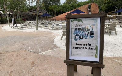 """""""Adult Cove"""" Area Now Available at Disney's Typhoon Lagoon for a Limited Time"""