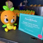 Disney Fans React to Long Waits for Orange Bird Sipper at Epcot International Flower and Garden Festival