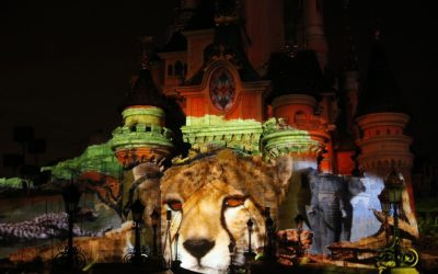 Disneynature Projection Show Returning to Disneyland Paris