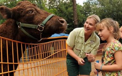 Rafiki's Planet Watch to Reopen at Disney's Animal Kingdom This Summer