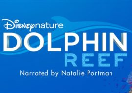 "Disneynature's ""Dolphin Reef"" Coming to Disney+"