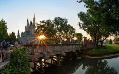 Explore the Magic and Save with Disney's Summer One World Ticket