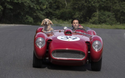 """Fox Releases First Trailer, Poster For """"The Art of Racing in the Rain"""""""