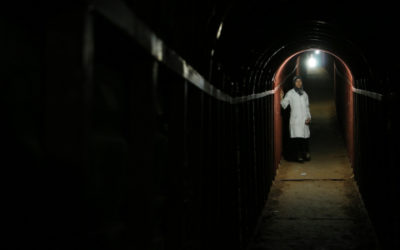 """National Geographic Expands Documentary Film Slate With """"The Cave"""""""
