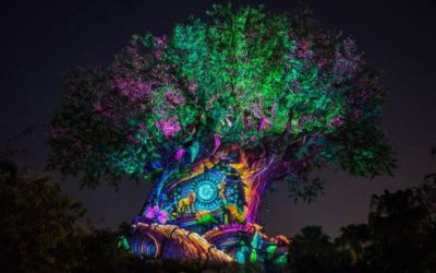 Disney's Animal Kingdom Announces Special New Year's Eve Celebration Plans