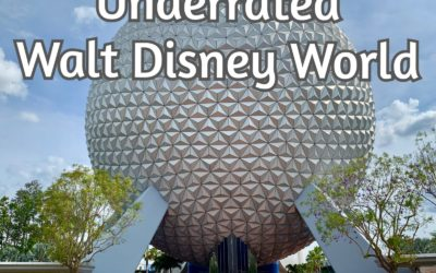The 5 Most Underrated Rides at Walt Disney World