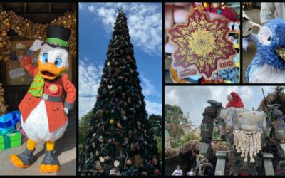 Disney's Animal Kingdom Celebrates the 2019 Holiday Season