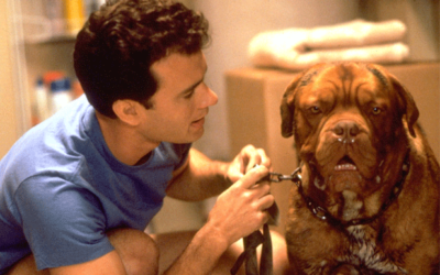"Original Series Based on Touchstone's ""Turner and Hooch"" In The Works for Disney+"