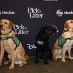 """Pick of the Litter"" Comes to the Walt Disney Studios"