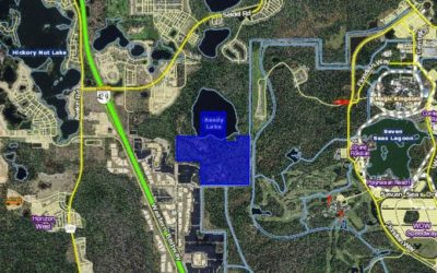 Walt Disney World Purchases 235 Acres of Land Adjacent to Magic Kingdom Resort Area