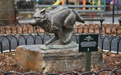 Hero Sled Dog Togo Honored With Statue in Disney Renovation of a New York City Park