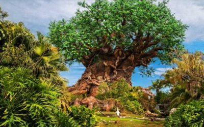 """A Path Less Traveled Tour"" to be Offered at Disney's Animal Kingdom to Celebrate Earth Month"