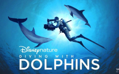 "Movie Review: Disneynature ""Diving with Dolphins"""