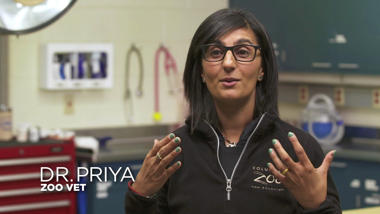 Dr. Priya from Secrets of the Zoo