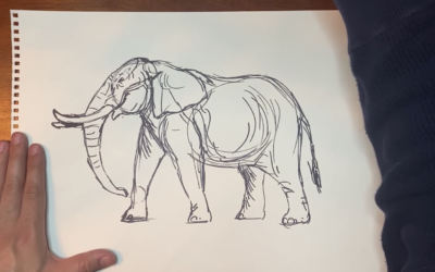 Disney's David Derrick Teaches Audiences to Draw an Elephant