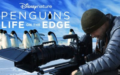 "Movie Review: Disneynature ""Penguins: Life on the Edge"""