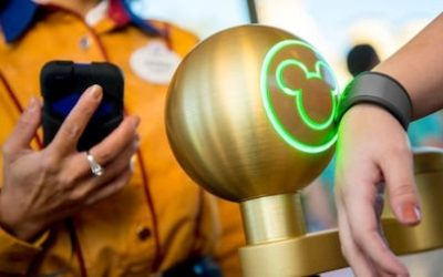 Disney World Cancels FastPass+, Restaurant Reservations, Disney Dining Plan, and Extra Magic Hours Ahead of Reopening