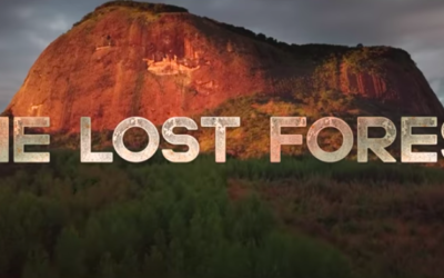 "Documentary Review - National Geographic's ""The Lost Forest"""