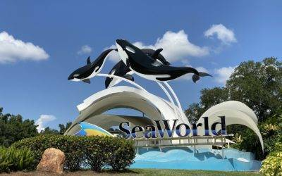 A Look Inside SeaWorld Orlando Ahead of June 11th Reopening