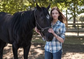 "New ""Black Beauty"" Film Adaptation Coming to Disney+ Starring Kate Winslet and Mackenzie Foy"