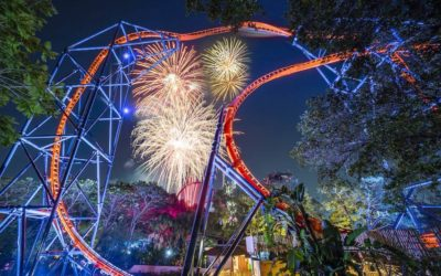 Busch Gardens Summer Nights Events Return with Food, Fireworks, and Extended Hours