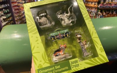 New Themed Ornament Box Sets Spotted at Walt Disney World