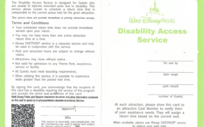 Judge Rules in Favor of Disney in Lawsuit Claiming Violation of Disability Act
