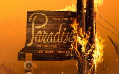 """National Geographic's """"Rebuilding Paradise"""" Coming to Select Theaters July 31"""