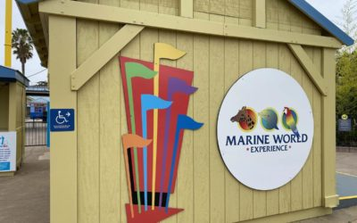 A Look Inside the West Coast's Only Open Theme Park: Six Flags Discovery Kingdom's Marine World Experience