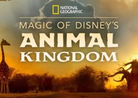 "Josh Gad to Narrate ""Magic of Disney's Animal Kingdom"" Docuseries Coming to Disney+ September 25"