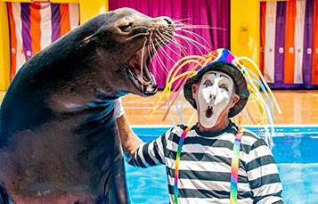 SeaWorld Orlando Reports Revenue and Attendance Down 96% From Same Time Last Year