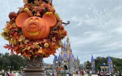 Photos: Magic Kingdom Prepares for Fall with Decor, Merchandise, Food and Beverage Offerings