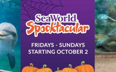 SeaWorld San Diego Announces Halloween and Christmas Events Plus Annual Pass Program Updates