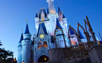 Walt Disney World Opens Vacation Packages, Ticket-Only Purchases for Late 2021