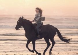 """Meet Beauty and Jo in Official Trailer for Disney+'s """"Black Beauty"""""""