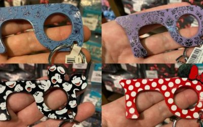 Four Disney-Themed No-Touch Pulls Spotted at Polynesian Village Resort