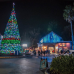 California's Six Flags Disovery Kingdom Announces 2020 Holiday in the Park Lights Event Details