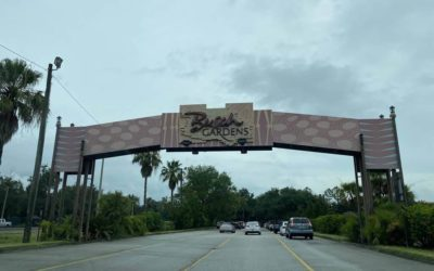 Busch Gardens Tampa Bay to be Closed on December 8 Due to Water Main Break
