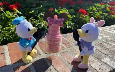 Quick Bites Review: Minnie Mouse DOLE Whip Watermelon Cup from Disney Springs